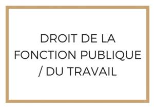 Droit de la Fonction Publique du Travail Paris Avocat